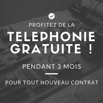 Téléphonie Pro gratuite